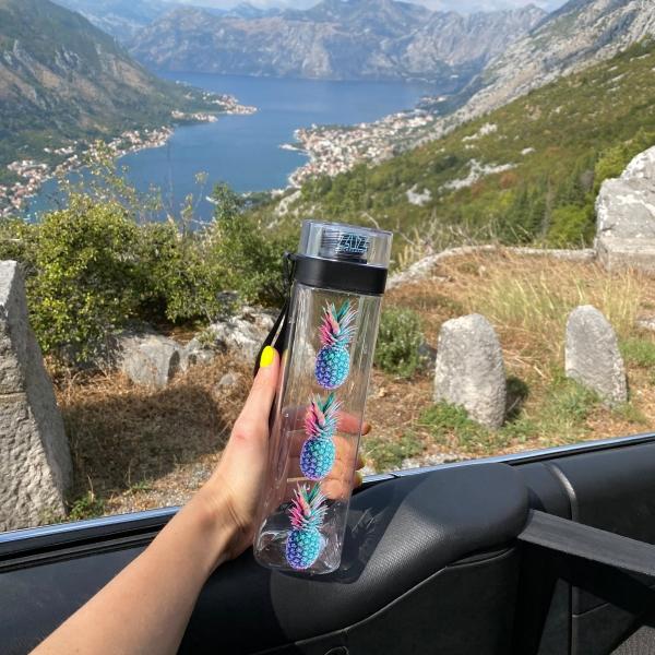 Бутылка для воды ZIZ Ананас